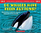 Scholastic Q & A: Do Whales Have Belly Buttons? (Scholastic Question & Answer)